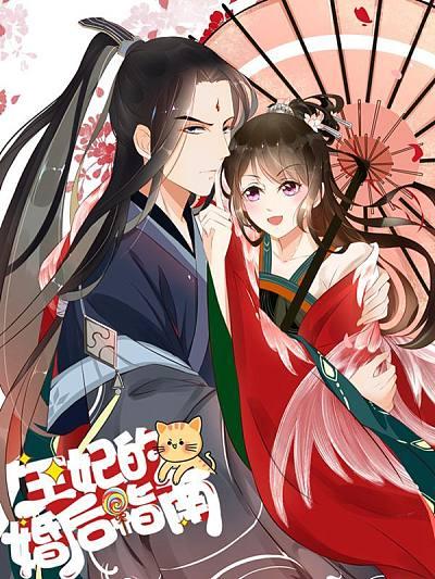 王妃的婚後指南漫畫封面