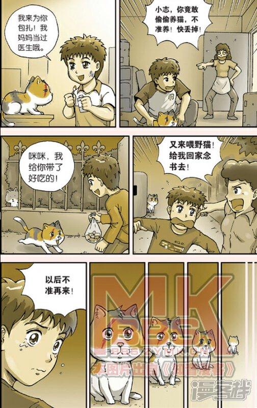 猫的报恩漫画全一话-漫漫画実客栈狂果图片