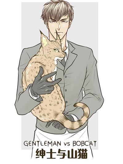 绅士与山猫
