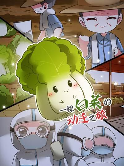 一棵白菜的动迁之旅,一棵白菜的动迁之旅漫画