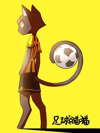 足球猫猫的封面图