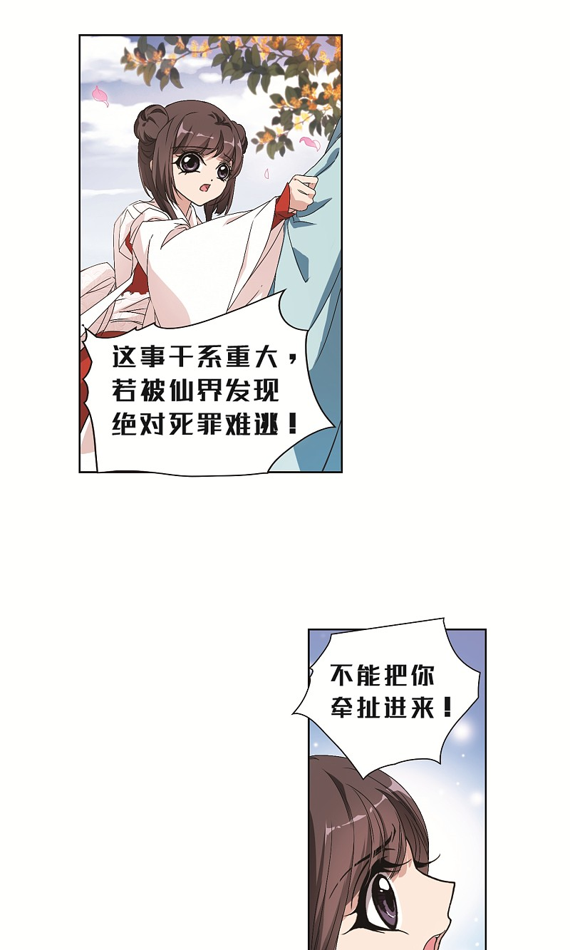 5.jpg