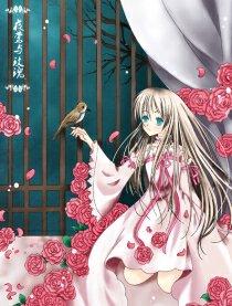 夜莺与玫瑰的封面图